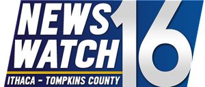NewsWatch Logo